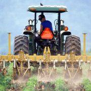 Tarcza antykryzysowa - rolnictwo